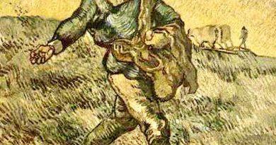 De Zaaier van Vincent van Gogh